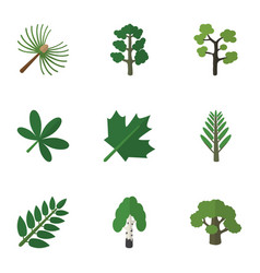 Flat icon bio set of garden timber jungle and vector