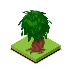 green old oak isometric 3d icon vector image vector image