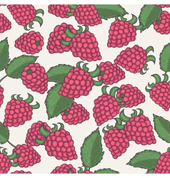 Hand drawn raspberry seamless pattern vector image vector image