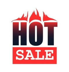 Hot sale flat icon vector image vector image