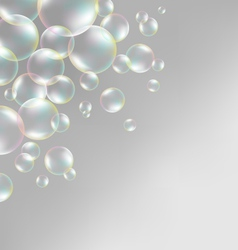 Soap bubbles on grayscale vector