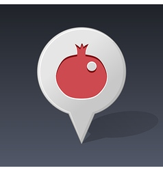 Garnet pin map icon Fruit vector image