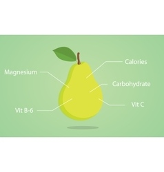 Pear nutrition with list of vector