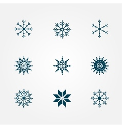 Beautiful snowflakes vector image vector image