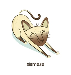 Siamese cat character isolated on white vector