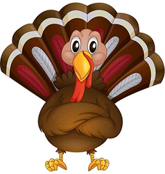 A problematic turkey vector