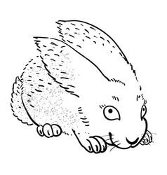Cartoon image of rabbit vector