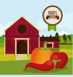 Colorful poster of organic best food with farm vector