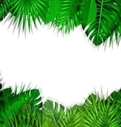 Frame tropical leaves summer background vector