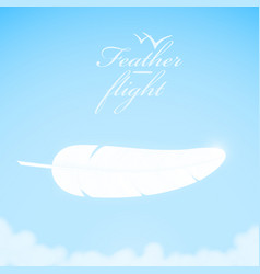white feather in the sky background vector image vector image