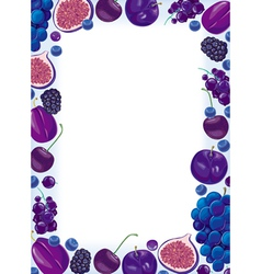 Lilac fruit and berries frame vector