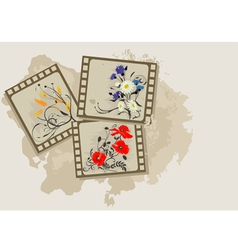 Summer flowers vintage photos vector