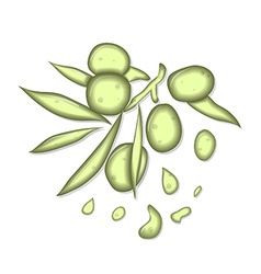 Olive oil liquid vector