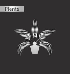 Black and white style icon of phoenix vector