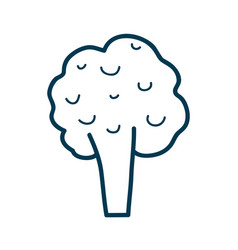 Contour health broccoli vegetable icon vector