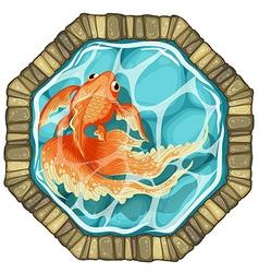 goldfish pond vector image
