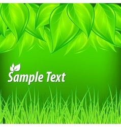 Green background with leaves vector image vector image
