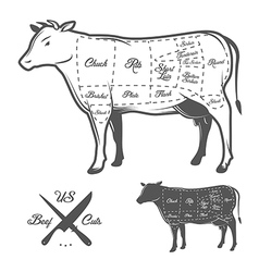 American cuts of beef vector image