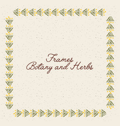 Frame botany and herbs design vector