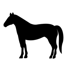 silhouette monochrome with farm horse vector image