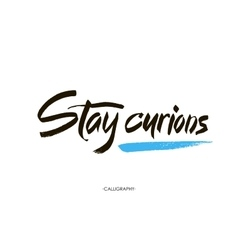 Stay curions calligraphy with ink drops vector