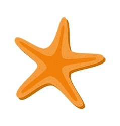 starfish beach isolated icon vector image vector image