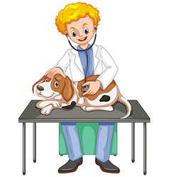 Vet checking up dog with stethoscope vector image vector image