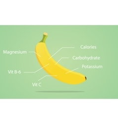 Banana nutrition with list of vector