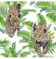 leopards palm leaves tropical watercolor seamless vector image