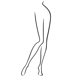 Lower part of slim female body vector