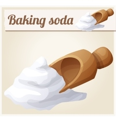 Baking soda Detailed Icon vector image