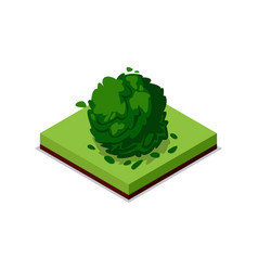 green bush isometric 3d icon vector image vector image