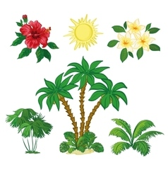 Sun palm trees flowers and leaves vector