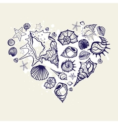 Heart of the shells vector image