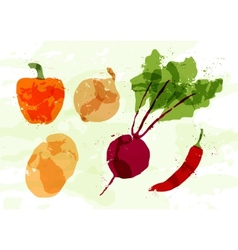 Set of colorful fresh vegetables stains vector