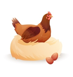 Hen in nest sitting on eggs vector