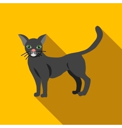 Halloween black cat icon flat style vector image vector image