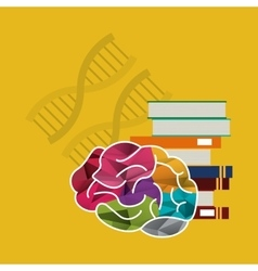 Human brain and books with dna strands icon image vector