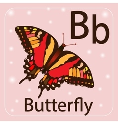 English letter b  butterfly vector