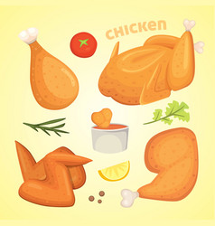 Beautiful delicious fried chicken set of vector