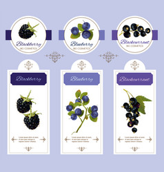 Berry cosmetic banner vector