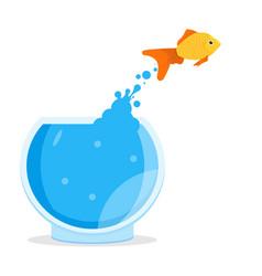 goldfish jumping out of bowl aquarium vector image