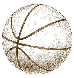 Engraving basketball ball vector
