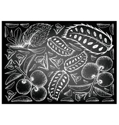 Hand drawn of tallow plum and soursop on chalkboar vector