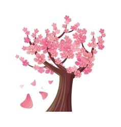 Sakura tree isolated cherry blossom vector
