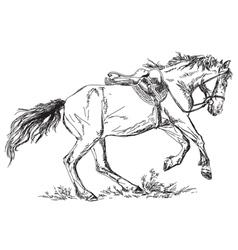 Mustang vector image vector image