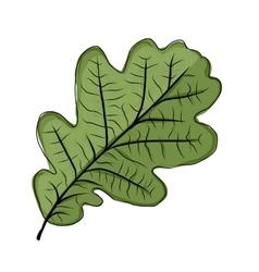 Oak leaf green sketch for your design vector image