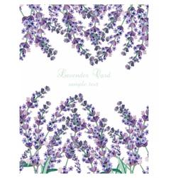 Lavender card border vector