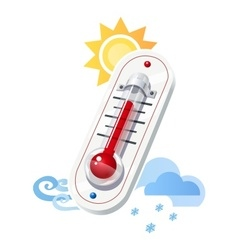 Thermometer show temperature vector image