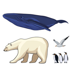 Colorful arctic animals set vector